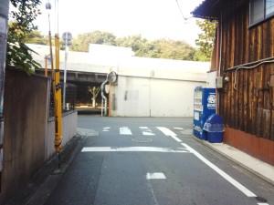 DSC_0064[1]